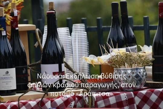 Νάουσα: Εκδήλωση βύθισης φιαλών κρασιού παραγωγής, στον ποταμό «Αράπιτσα» - MyAlbum