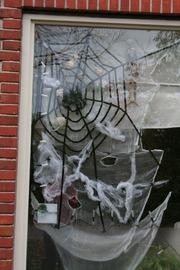 Foto's van Feesten uit Drogeham - Halloween 2008