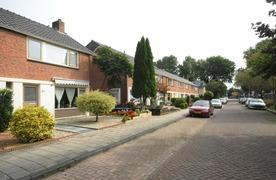 Activiteiten Rijnstraat 2012/ 2013