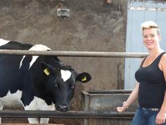Foto's van  uit Hoevelaken - boerderijshoot - 10 augustus 2014