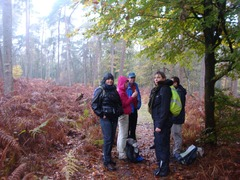 Foto's van Bos - De Steeg - 3 november 2012
