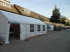 Foto's van Feesten uit Zoetermeer - halloween 2012