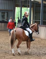 Foto's van Paardensport uit Hoevelaken