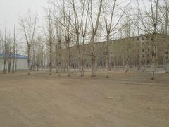 Борзя-3 (апрель-май 2012)