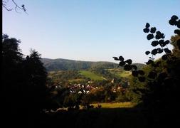 Foto's van Bos - Saksa