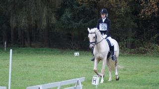 Foto's van Paardensport uit Neede - NK Eventing pony's Bathmen 5 november