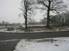 Foto's van Sneeuw uit Tweede Exloermond - winter december 2009