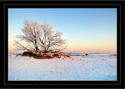Foto's van Landschap en lucht uit Loon op Zand - winter 2009