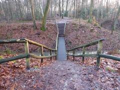 Foto's van Bos uit Apeldoorn - Oliebollenwandelingen, Apeldoorn, 5-01-2014, Wandellust, 25 km.