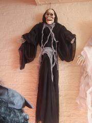 Foto's van Verzamelingen uit Capelle aan den Ijssel - Halloween UITVERKOOP