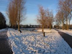 Foto's van Sneeuw uit Goes - Winter 2013 Goes