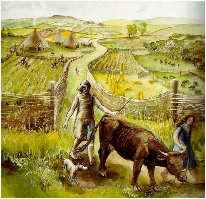 ijzertijddorp met celtic fields