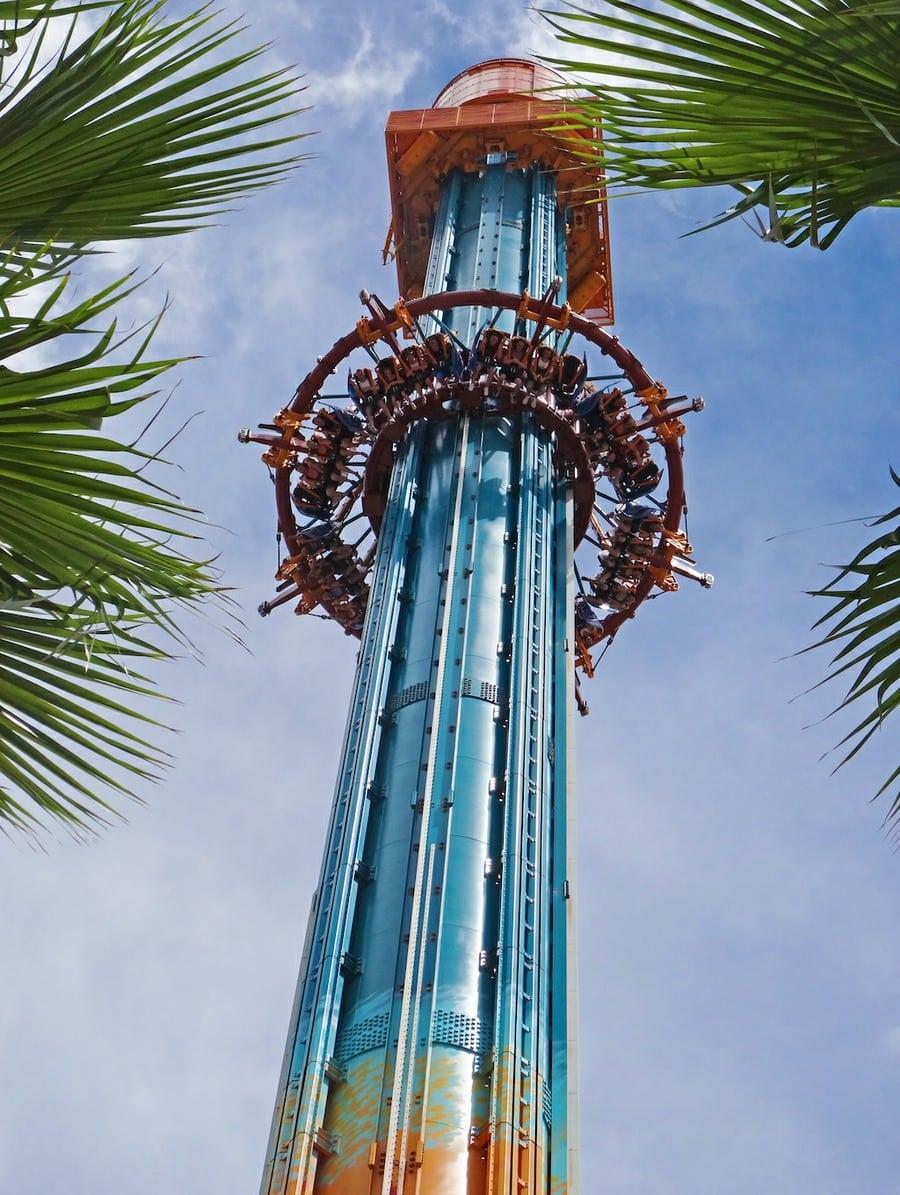 Re: Realiteitsbesef in Busch Gardens Tampa - (trip & video report) - 15-9-2015