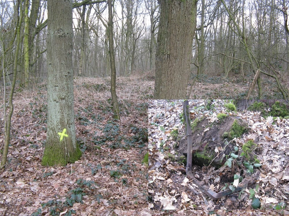 http://www.mijnalbum.nl/GroteFoto-4M8UBRO8.jpg