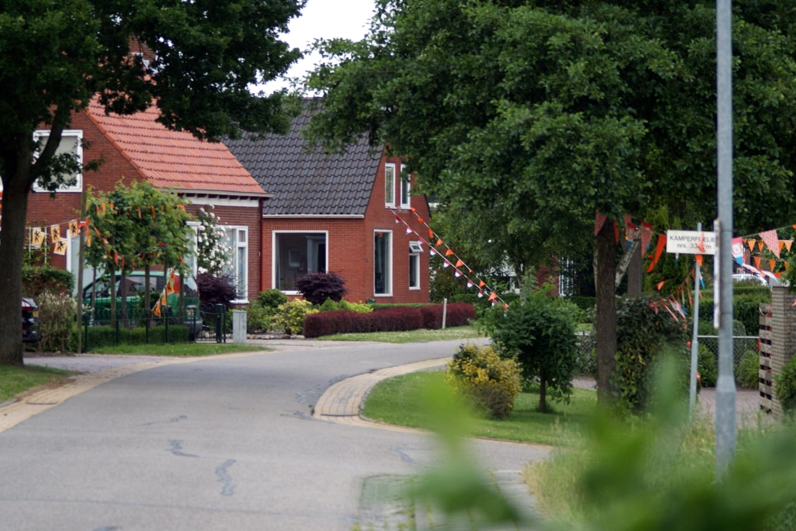 Heiligerlee Oranje 2010 Oude Hornweg