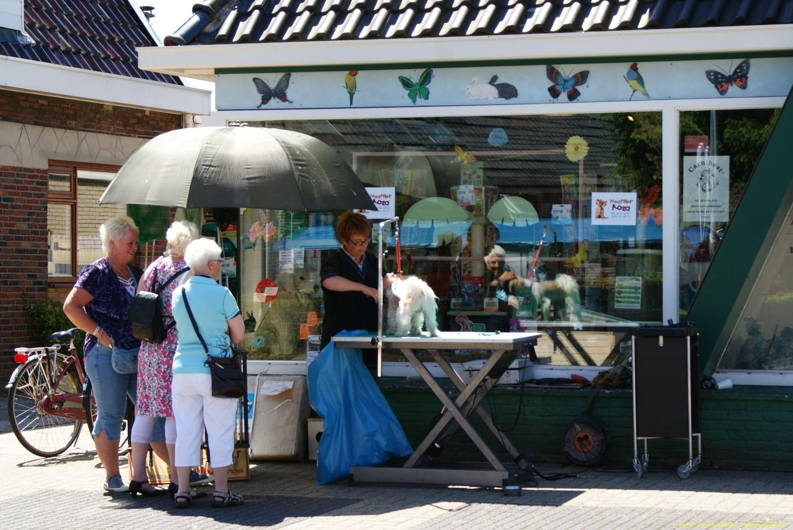Jaarmarkt 2011 Heiligerlee