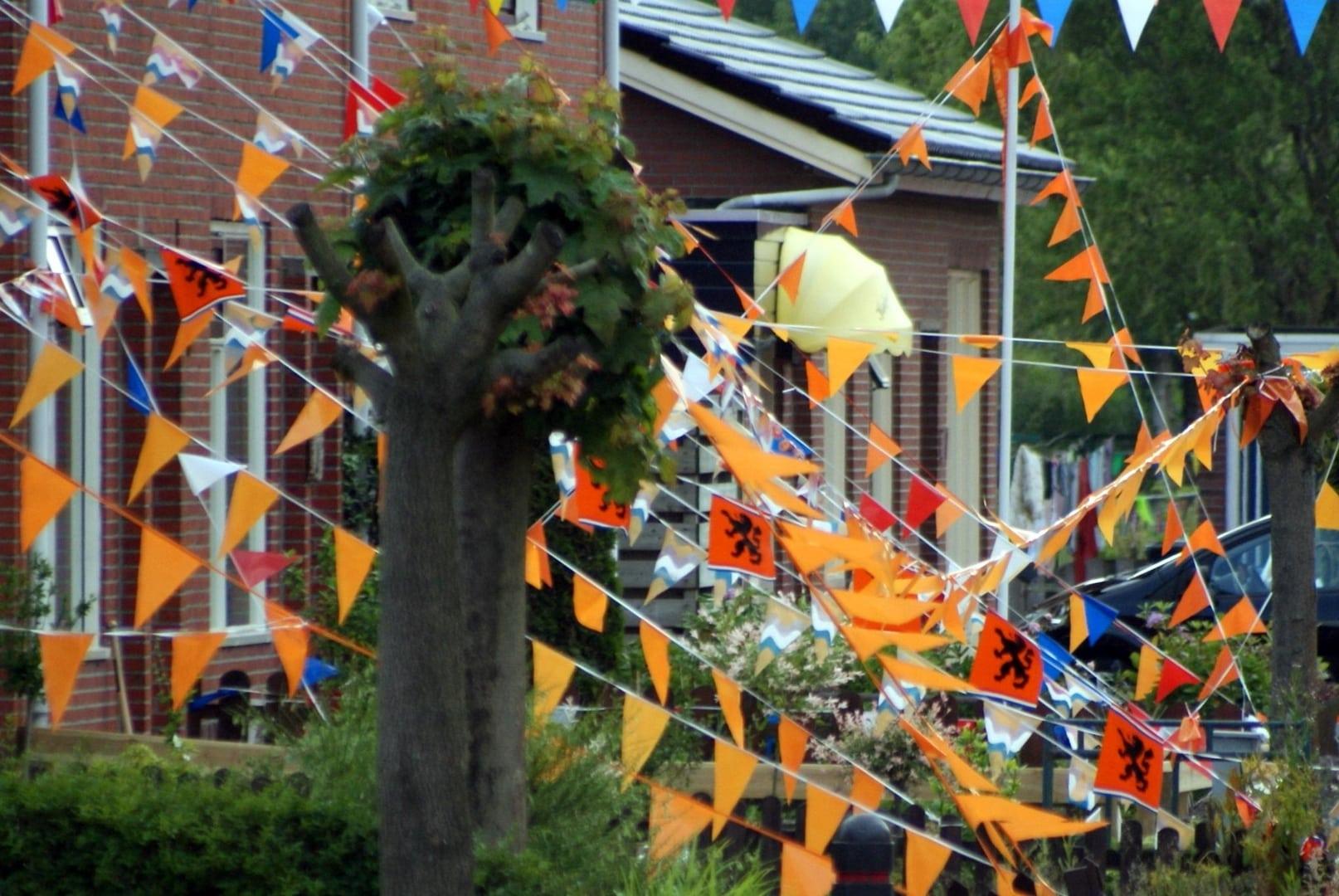 Heiligerlee 2010 Oranje Graaf Adolfstr