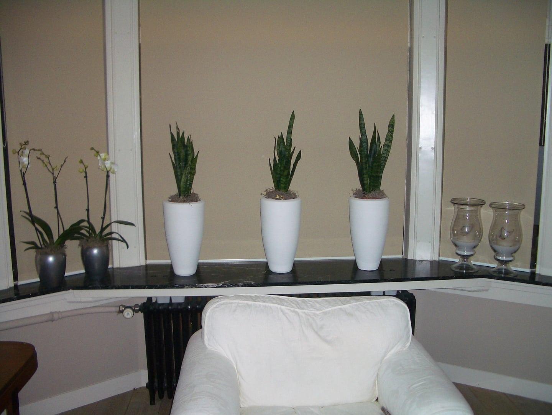 Hoe woonkamer verder in te richten (accessoires, kleur, etc ...