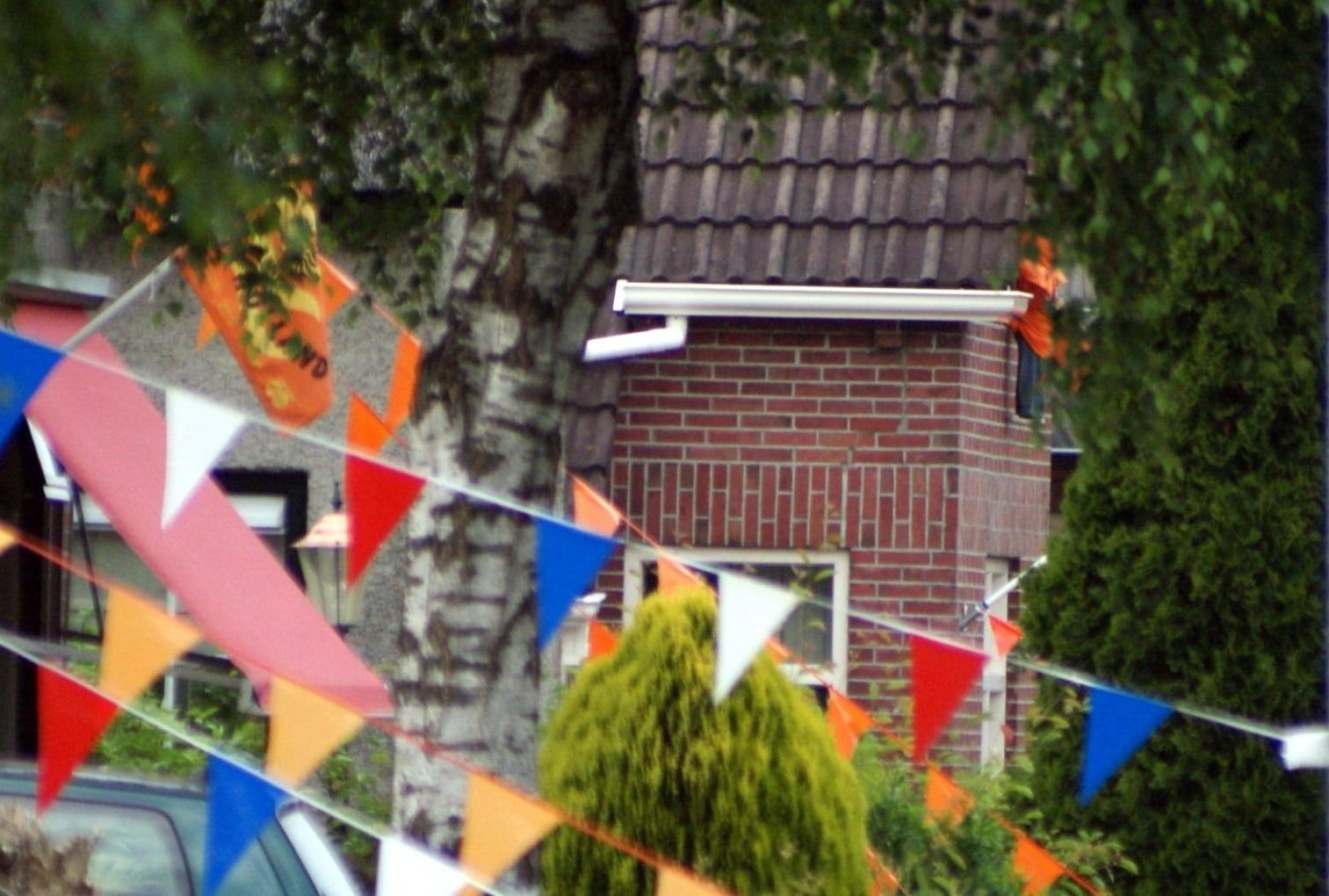 Heiligerlee Oranje 2010 Hoethslaan