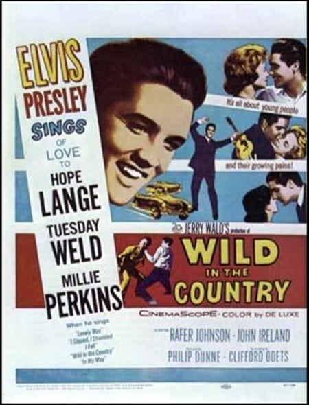 Filmposter: Wild in the Country