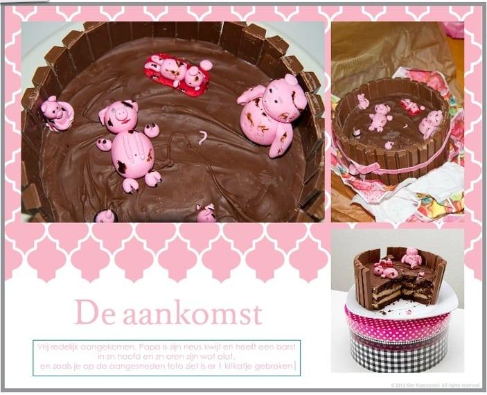 http://www.mijnalbum.nl/GroteFoto-ZL6LAFRN.jpg