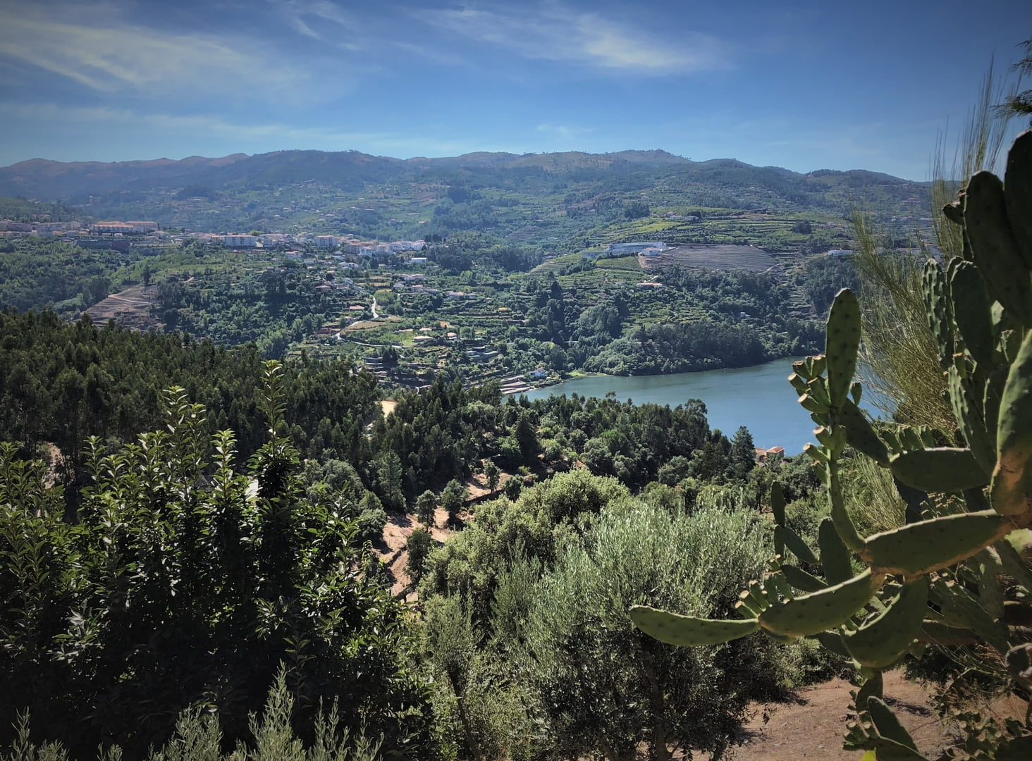 Douro Valley views (Portugal)
