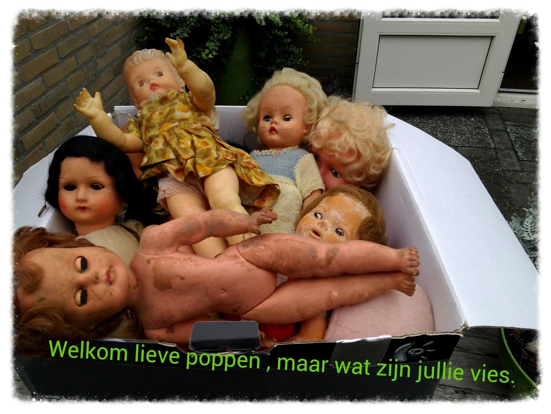 http://www.mijnalbum.nl/Foto800-MGPRS83H.jpg