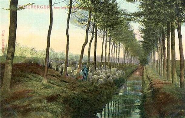 lekkere watertje/welgelegenlaan 1910