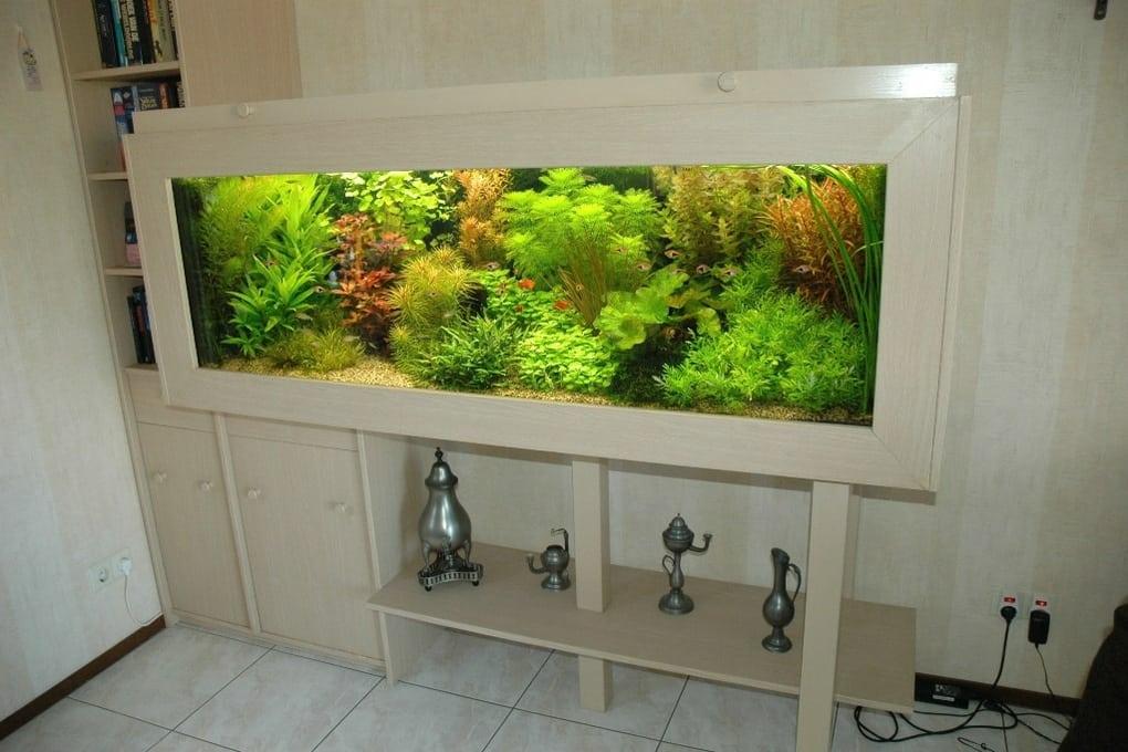 Aquariumkeuring