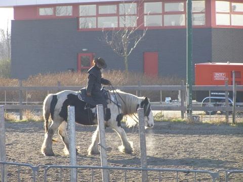 Waxjas paardrijden