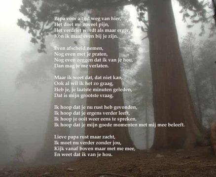 Verwonderlijk Ged]Rust zacht papa. gedicht gemaakt. wat vinden jullie? • Bokt.nl NE-16