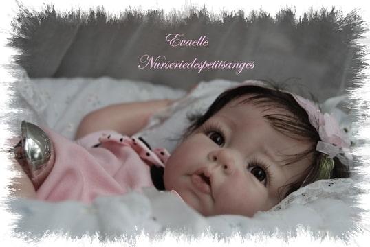 Foto-ERDUXOLY