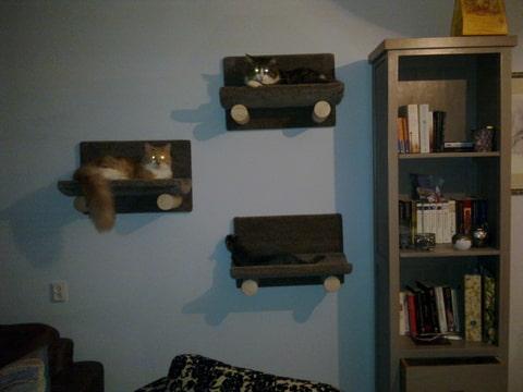 Kattenforum het forum van kattenplaza toon onderwerp for Huisjes voor aan de muur