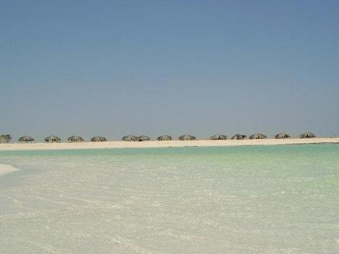 Paardenforum cavaletti toon onderwerp egypte - In het midden eiland grootte ...
