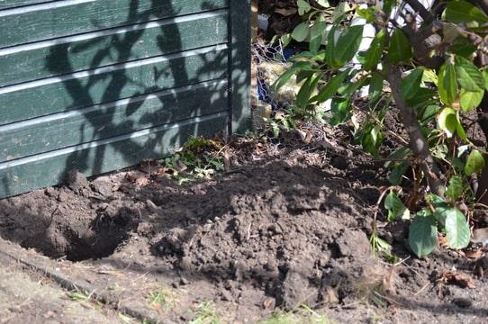 hond begraven in tuin mag dat