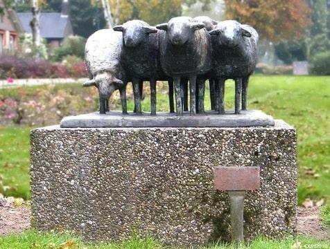 schapendrift