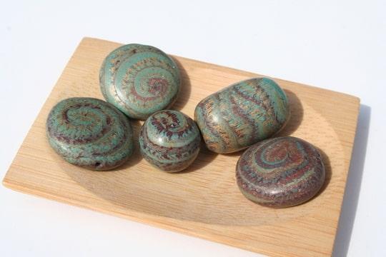 nautile bronze