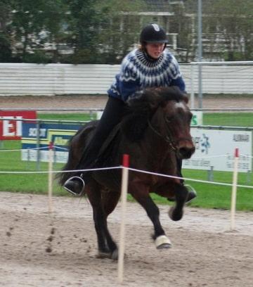 Macliza en Kvika, Gaedingakepni Hestagaman 2006