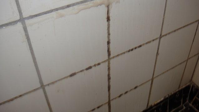 Schimmel voegen badkamer