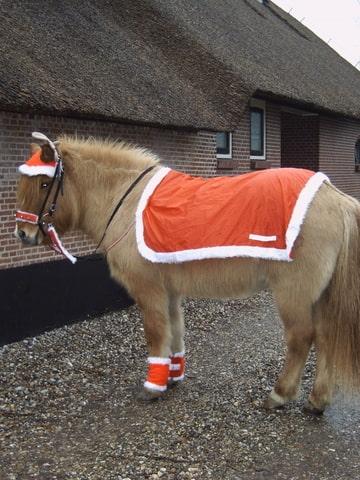 Funi à la kerst rendier • Bokt.nl