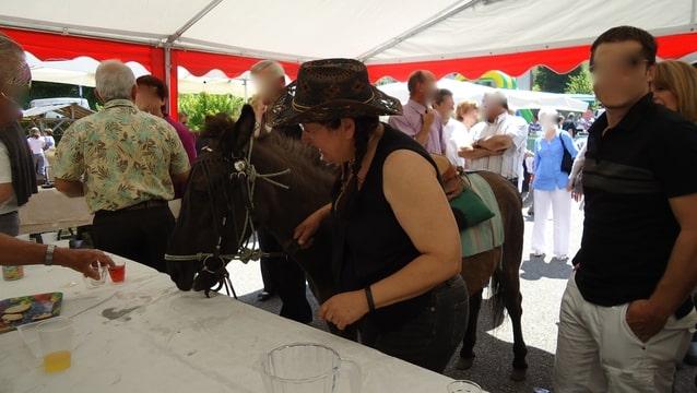 Contamines-Montjoie 2010 - Rencontre des muletiers... et de leurs mules Foto-6DKDJ8D8