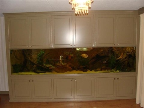 RVS zelfbouw aquarium 355x65x80cm   AquaforA