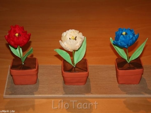 Tulpenplank