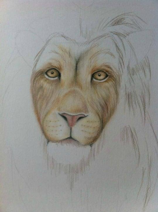 Leeuw tekenen en schilderen - Smeedijzeren prieel leunde tegen ...